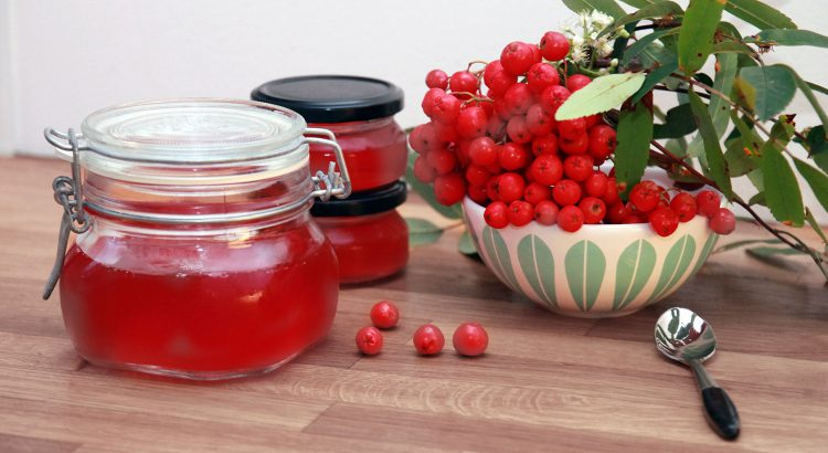 Norwegian rowan berris jelly