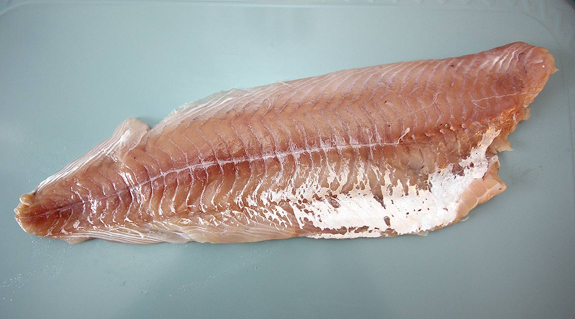 picture of a pollock fillet